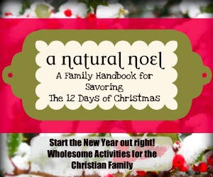A Natural Noel from Frugal Granola